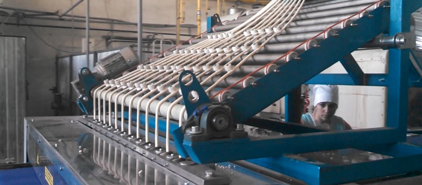 Запуск линии для производства гриссини и таралли #1