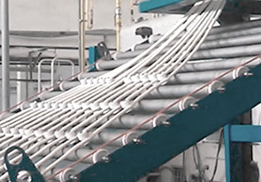 Запуск линии для производства гриссини и таралли - foto №2274