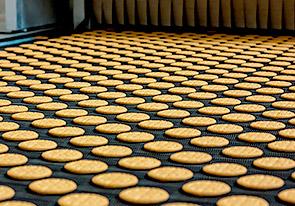Автоматическая линия для производства затяжного печенья введена в эксплуатацию в южной Украине - foto №2268