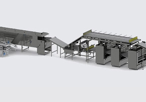Automatic line for the production of protein chips - foto №4059